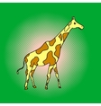 Giraffe pop art vector image