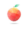 apple triangles vector image vector image