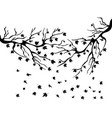 black maples falling background vector image vector image