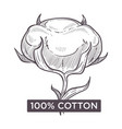 cotton hundred percent natural material monochrome vector image vector image