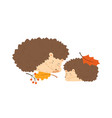 cute hedgehog family sleeping together pair of vector image vector image