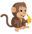 cute monkey cartoon eating banana vector image