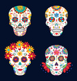 day dead skulls for mexican celebration vector image