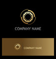 eye optic shine gold company logo vector image