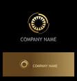 eye optic shine gold company logo vector image