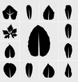 icons leaf vector image vector image