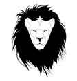 lion head with a star on his forehead isolated on vector image