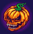 angry skull jack o lantern pumpkins carved vector image vector image