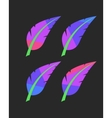 bright colored feathers set vector image vector image