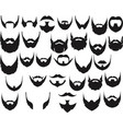different style beard set vector image