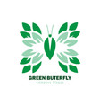 green butterfly logo vector image vector image