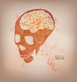 skull preview vector image vector image