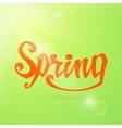 Spring Calligraphic handwritten word vector image