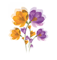 Spring Summer colorful Flowers vector image vector image