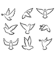 collection of Dove birds logo for peace concept an vector image vector image