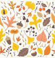 fall colorful leaves and berries pattern vector image