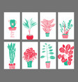 indoor plants and flowers hand drawing set vector image vector image