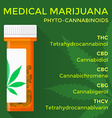 medical marijuana phyto cannabinoids concept vector image