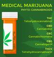 medical marijuana phyto cannabinoids concept vector image vector image