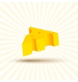 Volume of cheese realistic design vector image