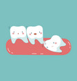 wisdom tooth push other tooth teeth and tooth vector image
