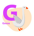 zoo abc letter with cute goose cartoon vector image