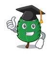 graduation mint leaves character cartoon vector image vector image