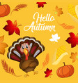 turkey on autumn card template vector image