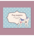 Vintage business card pug puppies vector image vector image
