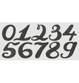 Numbers set in hand drawn calligraphy style vector image
