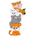 cute cats cartoon vector image