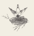 bird builds a nest hand drawn sketch vector image