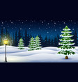 cartoon of winter night background with pine trees vector image