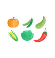 collection of vegetables pumpkin green bean vector image vector image