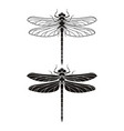 dragonfly silhouette icons set vector image vector image