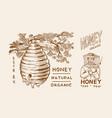 honey and bees beekeeper man and honeycombs vector image vector image
