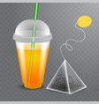 image of a tea bag with the plastic glass vector image vector image