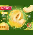 melon juice advertising honeydew melon vector image
