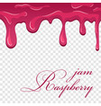raspberry jam cartoon flowing melting fruit sauce vector image
