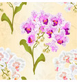 seamless texture branches orchids vector image vector image