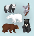 set of standing sitting and creeping bears vector image vector image