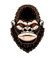 angry gorilla head design element for logo label vector image vector image