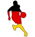 Basketball colors of Germany vector image