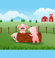 three little pig playing in the farm vector image