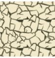 cracked ground pattern vector image