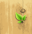Green Leaf on old wood background vector image vector image