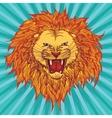 Grin lion vector image
