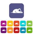 pet mouse icons set flat vector image