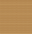 Seamless Brown Rope Texture vector image