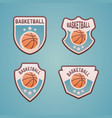 basketball sport team colored emblems vector image